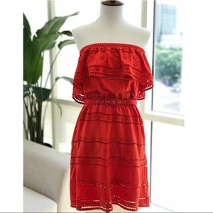 Bebe: Orange Embroidered Jersey Tube Dress